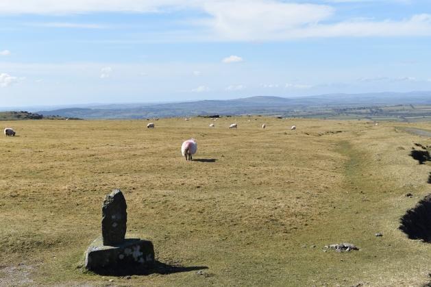Stephens Grave 1