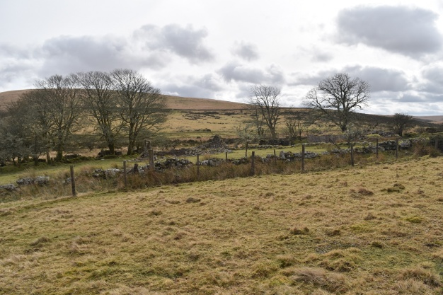 Swincombe Farm 4