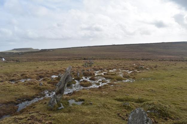 Trowlesworthy Stone Row 2