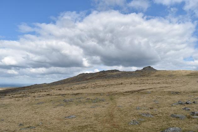 Cosdon Hill 31