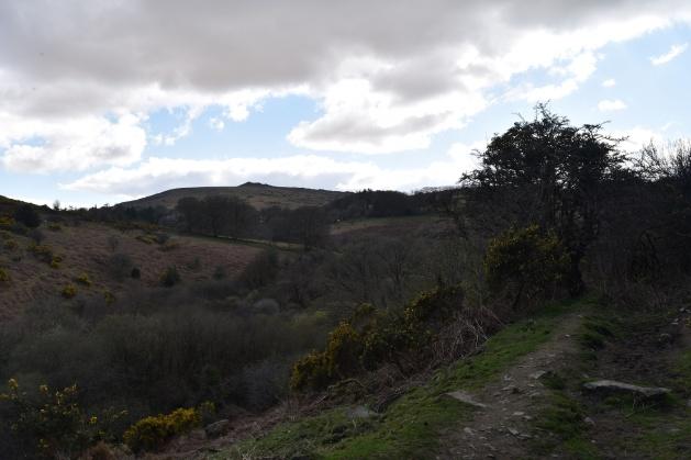 Cosdon Hill 45