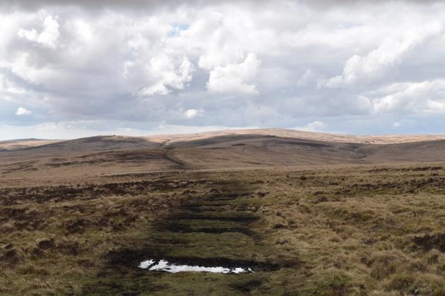 Cosdon Hill 8