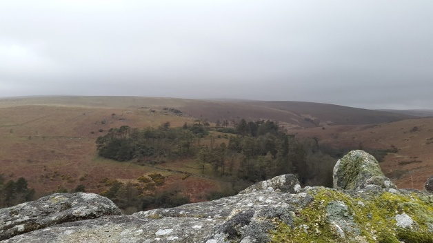 Grippers Hill 11