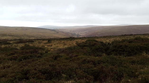 Grippers Hill 9
