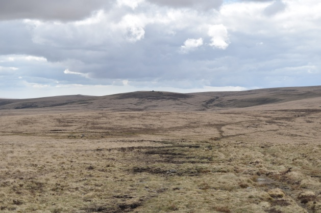 Whit Moor Stone Circle 3