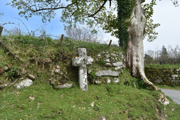 Drywell Cross 1