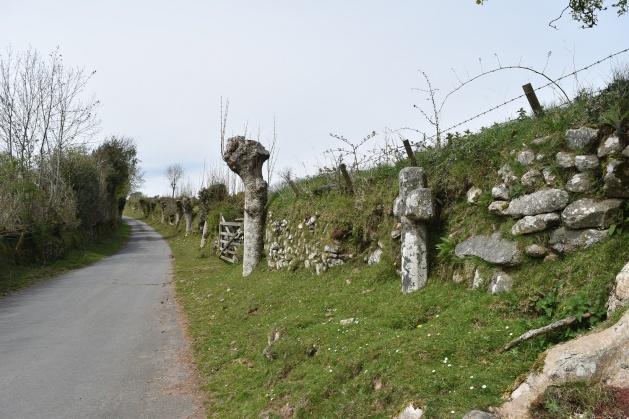 Drywell Cross 2
