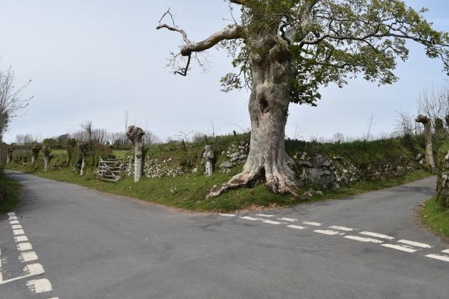 Drywell Cross 3