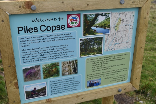 Piles Copse 2