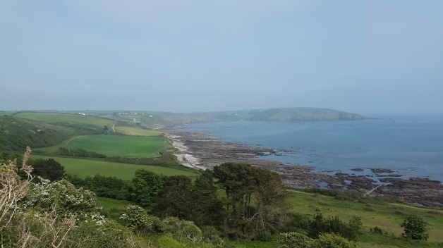 Wembury Point BBQ 2