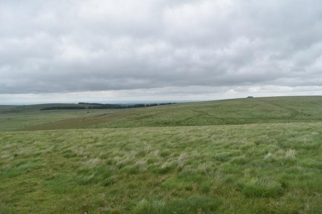 Buttern Hill 10