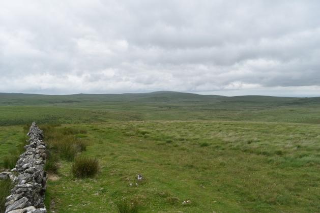 Buttern Hill 11