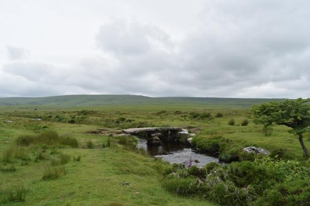 Buttern Hill 14