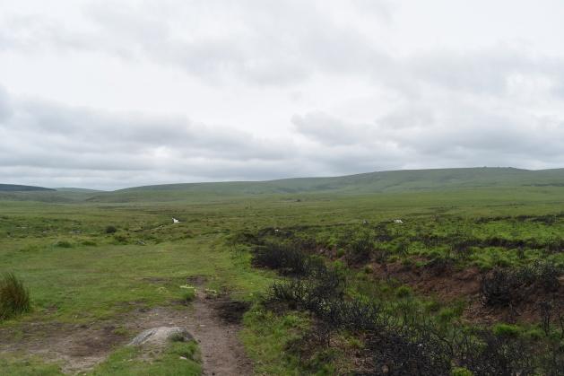 Buttern Hill 16