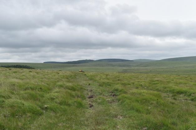 Buttern Hill 18