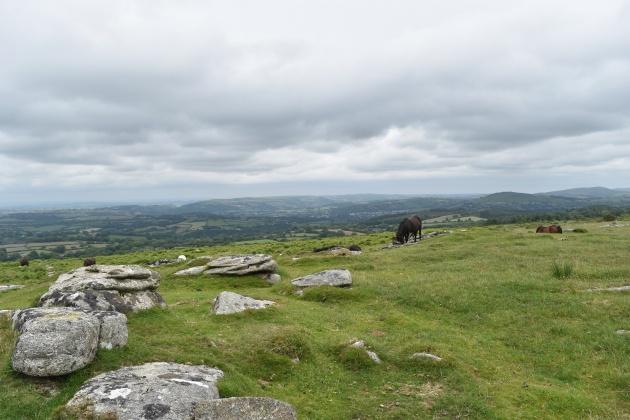 Buttern Hill 2
