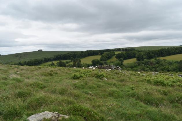 Buttern Hill 22