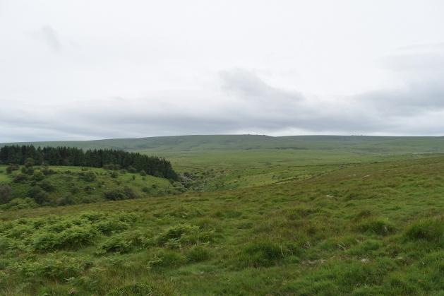 Buttern Hill 23