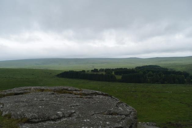 Buttern Hill 26