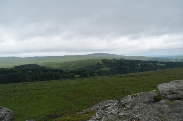 Buttern Hill 27
