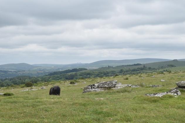 Buttern Hill 3