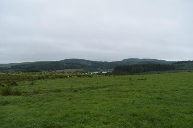 Buttern Hill 31