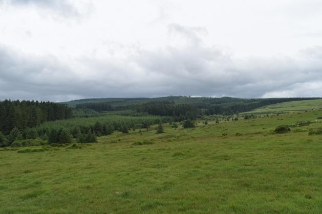 Buttern Hill 4
