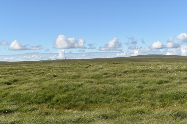 Maiden Hill 2