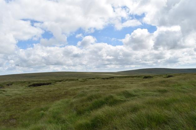 Black Hill (cranmere) 1