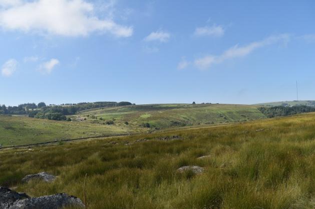 Round Hill Tor 2