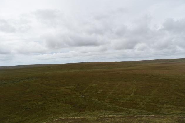 green-hill-21