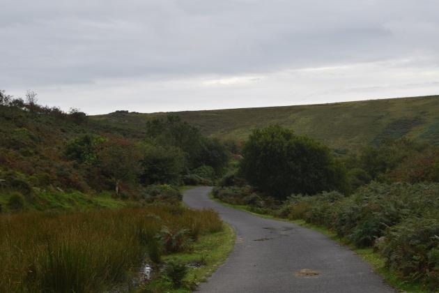 green-hill-35