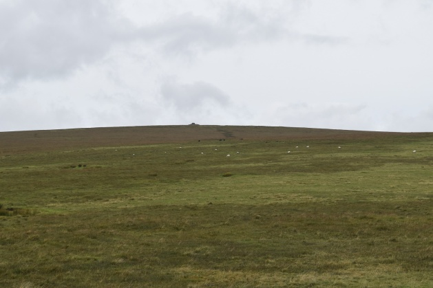 green-hill-8