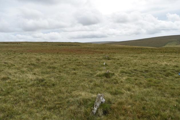 staldon-stone-row-and-circle-1