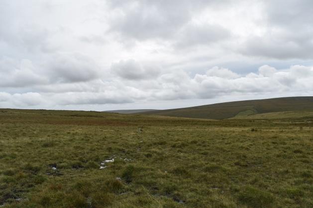 staldon-stone-row-and-circle-2