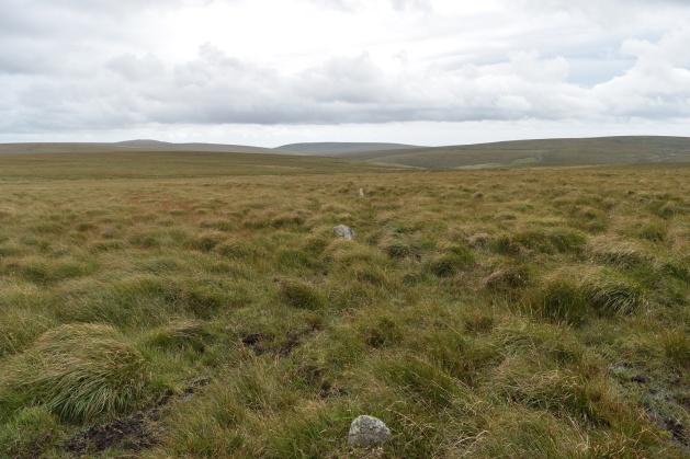 staldon-stone-row-and-circle-3