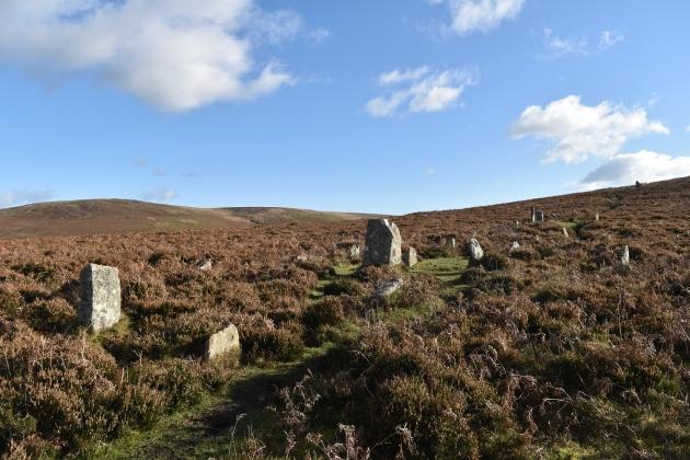 challacombe-stone-row-1
