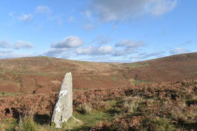 challacombe-stone-row-3