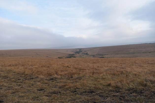 gibbet-hill-16