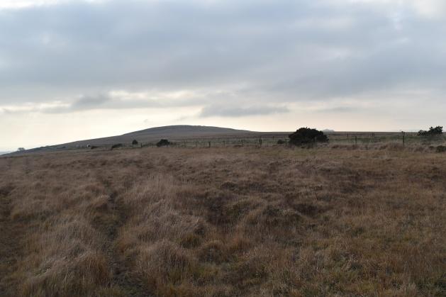 gibbet-hill-4