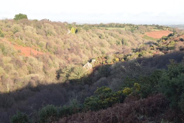 cosdon-hill-22
