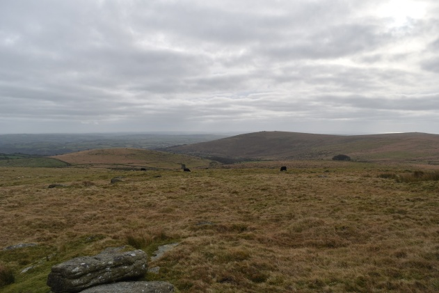 old-hill-tor-14