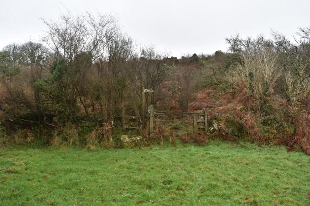 moretonhampstead-and-meldon-hill-8