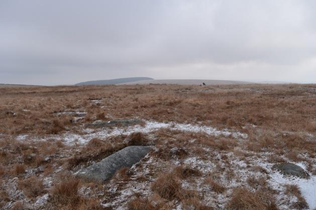 sittaford-stone-circle-4